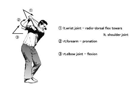 A Study on Golf Swing|整形外科医mura-Qによる-身体の仕組み